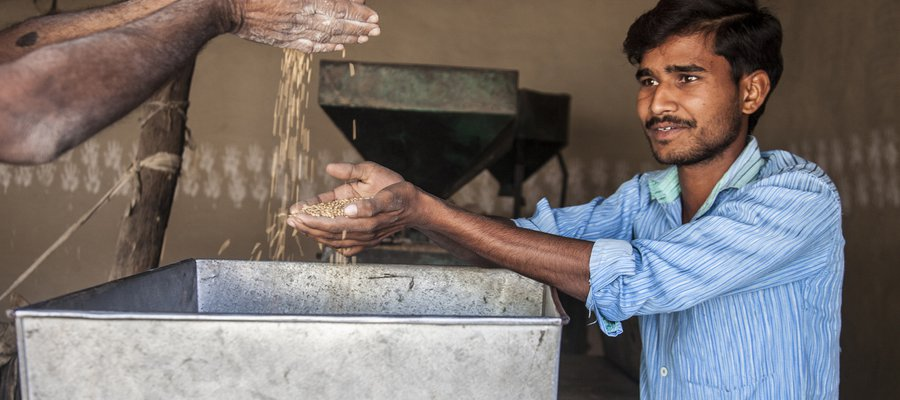 Anuj works in agriculture thanks to support from TLM
