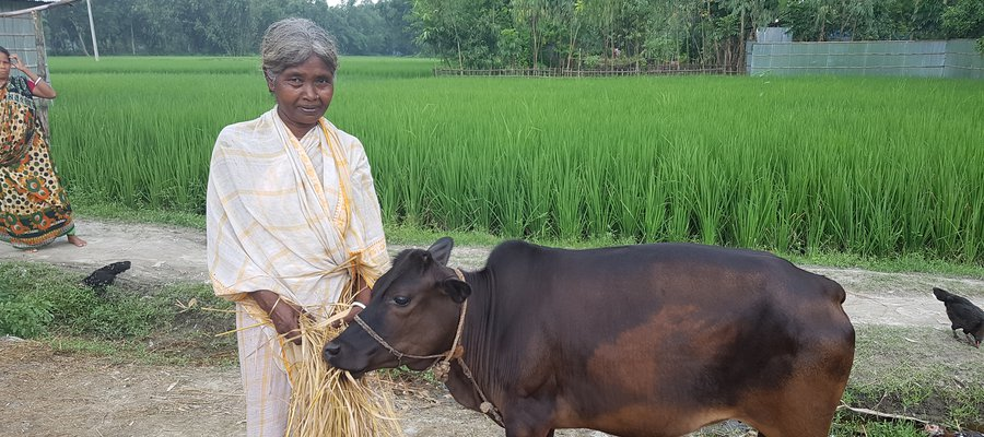 Rajo with a cow she bought with a grant from the NUPIP Project
